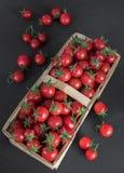 Små röda körsbärsröda tomater i en vide- rottingkorg på en träsvart bakgrund i lantlig stil, selektiv fokus röda tomater f royaltyfri foto