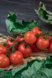 Små röda körsbärsröda tomater på en filial som ligger på ett hö på en gammal trätabell i en lantlig stil, selektiv fokus fotografering för bildbyråer