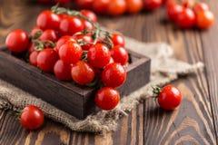 Små röda körsbärsröda tomater på lantlig bakgrund Cherrytomater på vinen Royaltyfri Bild