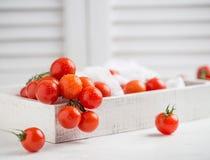 Små röda körsbärsröda tomater på lantlig bakgrund Cherrytomater på vinen Arkivfoton