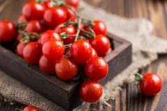 Små röda körsbärsröda tomater på lantlig bakgrund Cherrytomater på vinen Fotografering för Bildbyråer