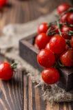 Små röda körsbärsröda tomater på lantlig bakgrund Cherrytomater på vinen Royaltyfria Bilder