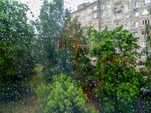 Små regndroppar på fönstret arkivfoton