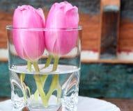 Små rosa tulpan i en vas med målad träbakgrund Royaltyfri Foto