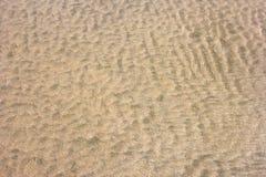 Små sanddyn på stranden Arkivfoton
