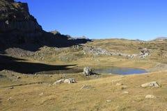 Små sjö och berg i Pyrenees Tramacastilla de Tena Royaltyfria Bilder