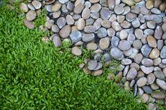 Små stenar och nytt grönt gräs Royaltyfria Foton