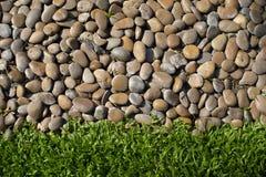 Små stenar och nytt grönt gräs Royaltyfri Foto