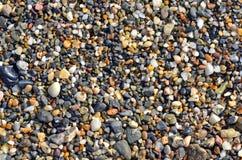 Små stenar på stranden Royaltyfri Fotografi