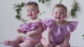 Små systrar i rosa kläder som poserar på photoshoot på bakgrund av väggen med dekoren stock video