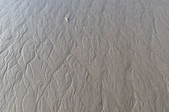 Små tidvattens- små viker med tömning av vattensmå viker Royaltyfria Foton