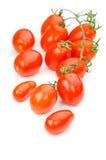 Små tomater som isoleras Arkivbilder