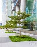 Små träd och gräsmattor Arkivbilder