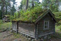 Små träkojor med vegetation på tak, Finland Arkivfoton