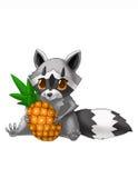 Små tvättbjörnförälskelser att äta ananas stock illustrationer