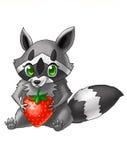 Små tvättbjörnförälskelser att äta jordgubbar Stock Illustrationer
