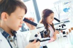 Små ungar som lär kemi i skolalaboratoriumet som ser i mikroskop arkivfoton