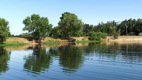 Små vågor på dammet med reflekterade träd och blå himmel stock video