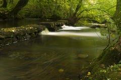 Små vattenfall, Dinglenaturreserven Llangefni. Lång expo Arkivfoton