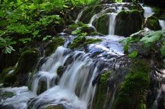 Små vattenfall på Plitvice sjöar Fotografering för Bildbyråer