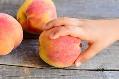 Småbarnet tar en mogen persika Söta nya persikor på tappningen trätabell Läcker och sund mat för ungar i sommar Royaltyfri Bild