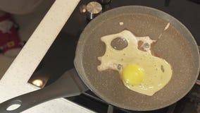 Småfisk för ägget för hemmafruskiljelinjer rå är det i pannan och det bränd video materiellängd i fot räknat lager videofilmer