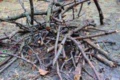 Småskog för öppen brand Arkivfoto