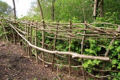 småskoghäck Royaltyfria Bilder