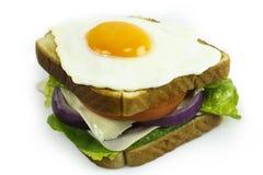 Smörgås av kalkon Royaltyfri Bild