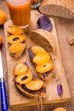 Smörgås med aprikons royaltyfri fotografi