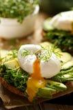 Smörgås med avokadot och det tjuvjagade ägget Arkivfoto
