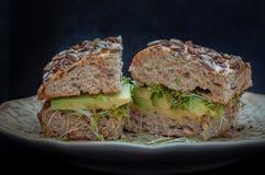 Smörgås med avokadot, ost och groddar Arkivfoto