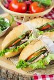Smörgås med grillade kött och grönsaker Royaltyfri Bild