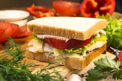 Smörgås med kött, ost och grönsaker Arkivbild