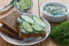 Smörgås med keso, gurkan och dill Royaltyfri Foto