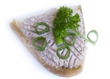Smörgås med pâté och persilja Fotografering för Bildbyråer