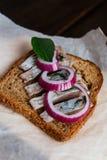 Smörgås med sillen Royaltyfri Fotografi