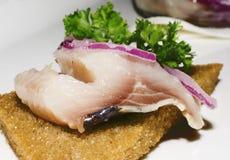 Smörgås med sillen, lökar och persilja Arkivfoto
