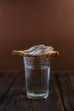Smörgås med sillen och vodka Fotografering för Bildbyråer