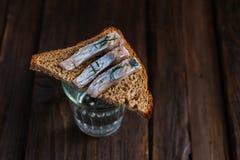 Smörgås med sillen och vodka Royaltyfria Bilder