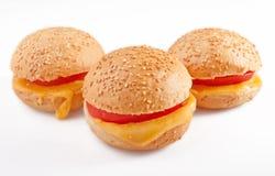 Smörgås med tomaten och ost Royaltyfri Foto