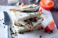 Smörgås tapas med sardiner Royaltyfri Bild
