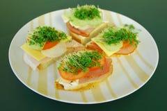 smörgåsar royaltyfri foto