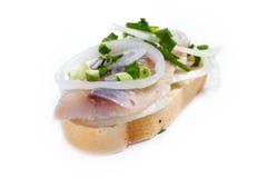 Smörgåsar av vitt bröd med sillen, lökar och örter Royaltyfria Foton
