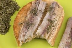 Smörgåsar med fiskfilén på rostat bröd Fotografering för Bildbyråer
