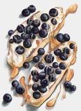 Smörgåsar med kräm- getost, blåbär och honung royaltyfri illustrationer