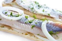 Smörgåsar med sillcloseupen Royaltyfri Foto