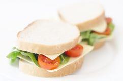 smörgåsar på en vit bakgrund royaltyfri foto