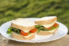 Smörgåsar på plattan och gräsplanbakgrunden Arkivbilder