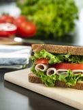 smörgåskalkon royaltyfri fotografi